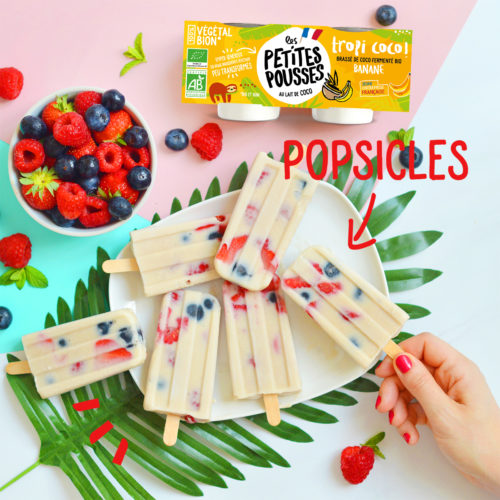 Popsicles fruits coco vegan