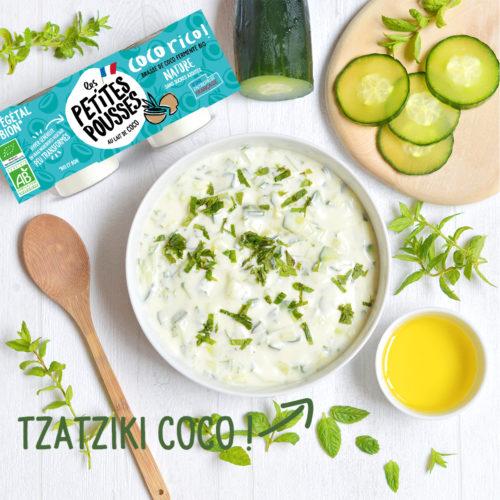 Tzatziki coco vegan