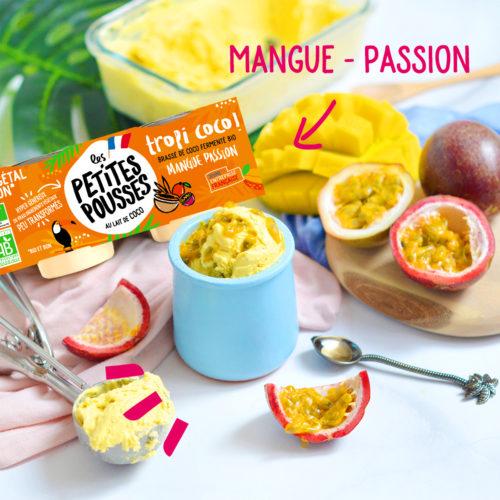 Sorbet aux fruits coco vegan